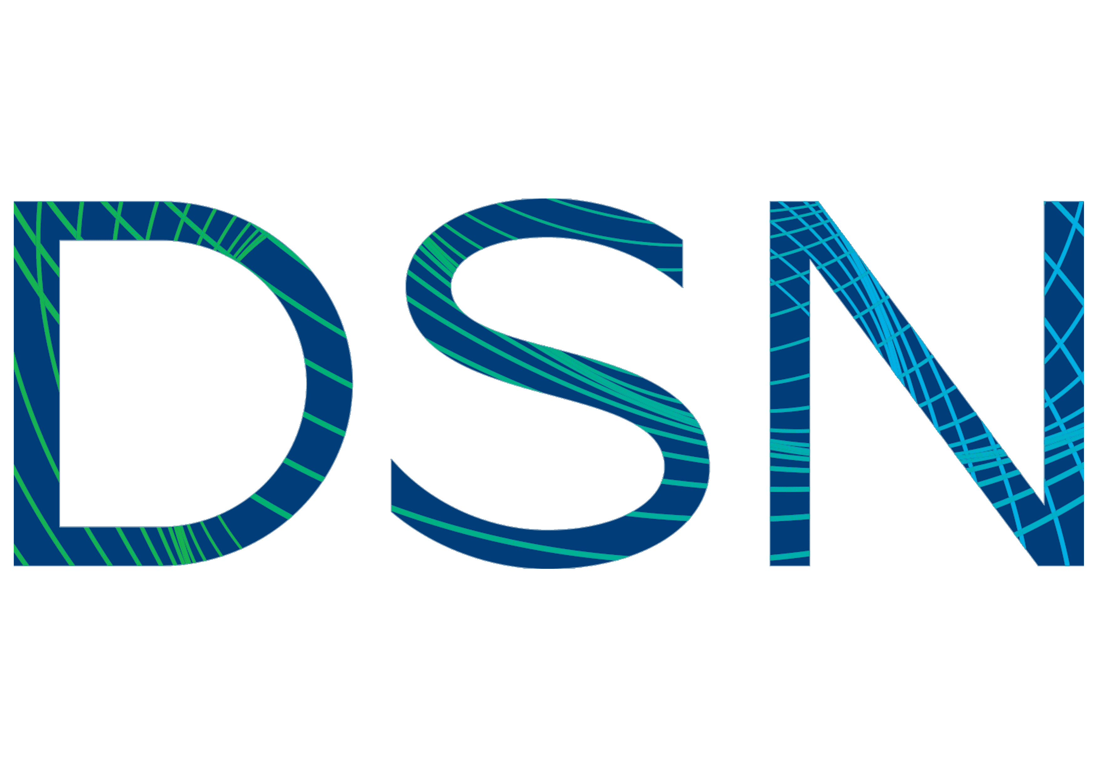 DSN Software LOGO